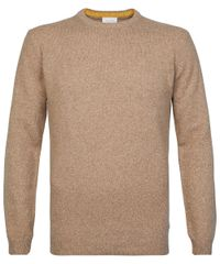 Brown crewneck jumper