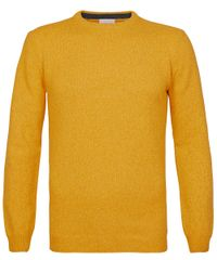 Yellow crewneck jumper