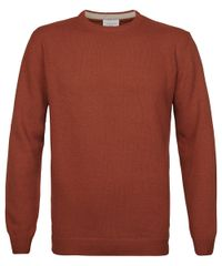 Rust crewneck jumper